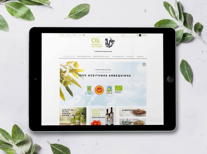 diseño web e-commerce en Terrassa